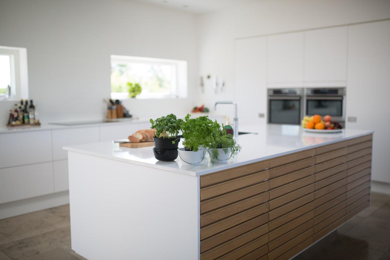 新築はゴキブリが出やすい!?家を建てる人が知っておきたいゴキブリ対策と業者の選び方